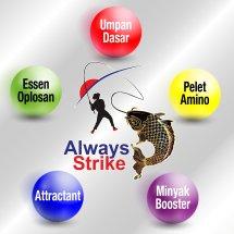 Logo Always Strike