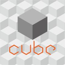 Logo Cube Store ID