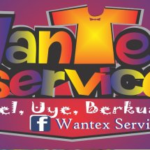 Logo Wantex Service