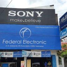 Logo Federal Electronic