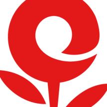 Logo Hobby&Collection
