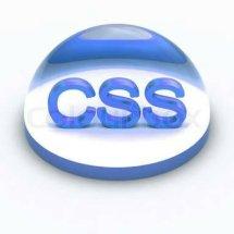Logo CSS1688