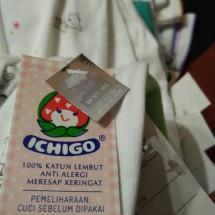 Logo Baby ICHIGO