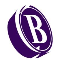 Logo bracini