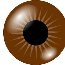 Logo Brown Eyes