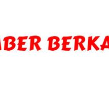 Logo Sumber Berkat Mandiri