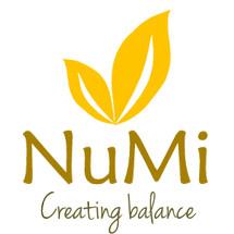 Logo NUMI Center