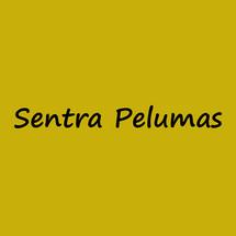 Logo Sentra Pelumas