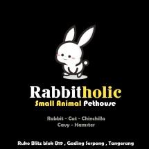 Logo Rabbitholic Gading Serpong