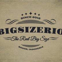 Logo bigsizerio