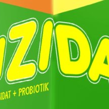 Logo gizidat