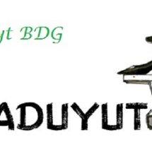 Logo Alprocyt-Bdg