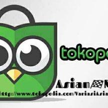 Logo Asian  Motor