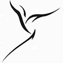 Logo SentraOnlineShop