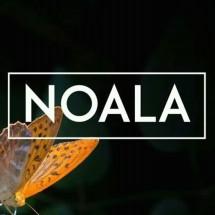 Logo NOALA - Mom & Kids Store