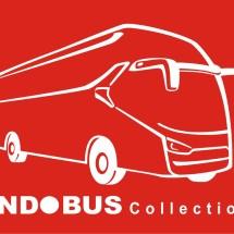 Logo Indobus Collection