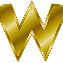 Logo WACO STORE JKT