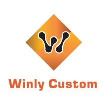 Logo Winly Custom