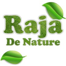 Logo RAJA DE NATURE