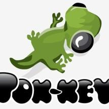Logo Tok-Key