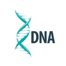 Logo DNA Collections