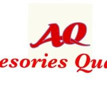 Logo aksesories quality