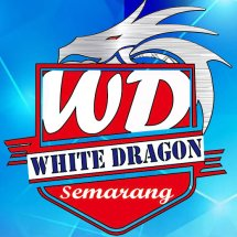 Logo white dragon