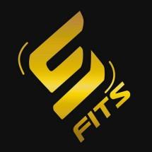 Logo SFIDN FITS