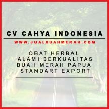 Logo Cahya Indonesia