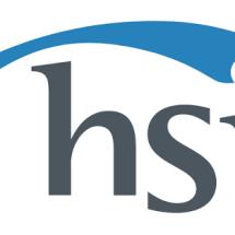 Logo Hong Sheng Indonesia
