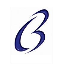 Logo Bram Com