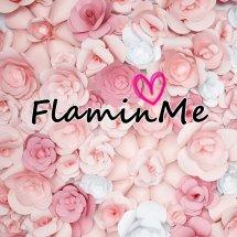 Logo FlaminMe