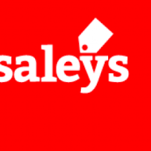 Logo Saleys Store