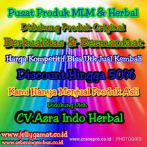 Logo Pusat Prdk MLM & Herbal