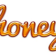 Logo Honey Clothing