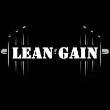 Logo LEANGAIN