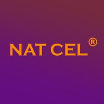 Logo Natcel