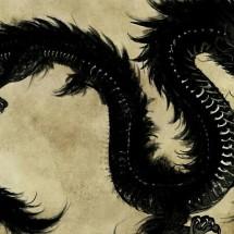 Logo black dragon cell