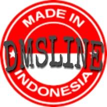 Logo dmsline