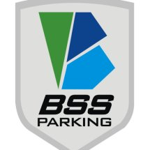 Logo BSS Collection