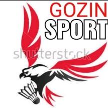 Logo GOZIN SPORT