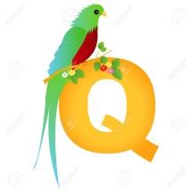 Logo qiar4yes
