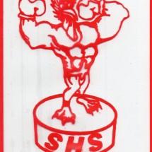 Logo ryo hermanto