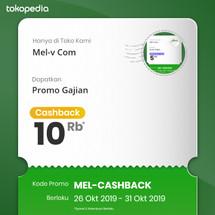 Logo Mel-v Com