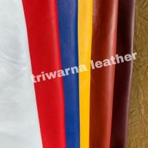 Logo triwarna leather