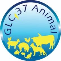 Logo GLC-37