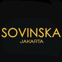 Logo Sovinska