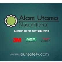 Logo Aunsafety
