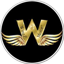 Logo WingZ Acc