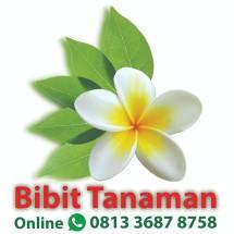 Logo Bibit Tanaman Online